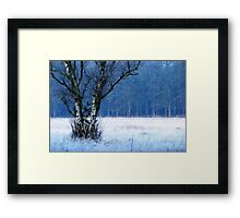 It was as cold as it looks Framed Print