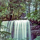 Tasmania's Russell Falls by Brett Rogers