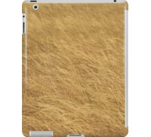Golden Grass, Classical Textures iPad Case/Skin