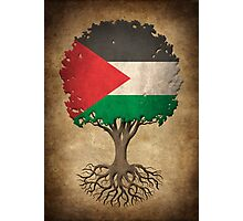 Tree of Life with Palestinian Flag Photographic Print