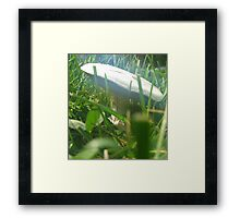 Psychedelic Toadstool Framed Print