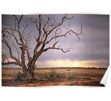 Outback Storm Poster