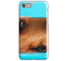 sleepy stray dog iPhone Case/Skin