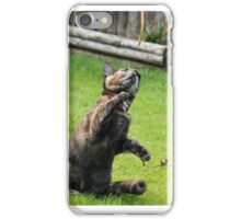 the playing kitten iPhone Case/Skin