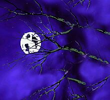Night Tree Branches and a Silver Moon by Saundra Myles
