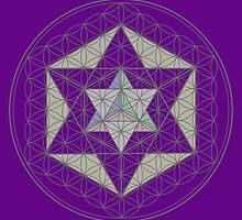 Flower of Life, Vector Equilibrium, Merkaba   by John Girvan