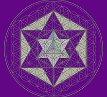 Flower of Life, Vector Equilibrium, Merkaba   by John Girvan