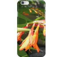 Striking Orange Flower  iPhone Case/Skin