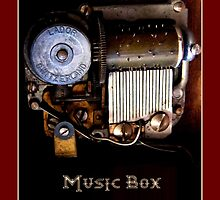 The Music Box by LeftHandPrints