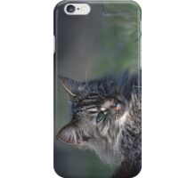 """Chat - Cat  """" Tchink boom"""" 01 (c)(t) ) by Olao-Olavia / Okaio Créations 300mm  f.2.8 canon eos 5  1989 iPhone Case/Skin"""