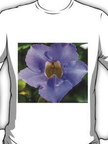 Blue Flower- Botanical Gardens San Antonio T-Shirt