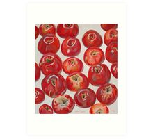 Beautiful red apples Art Print