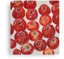 Beautiful red apples Canvas Print