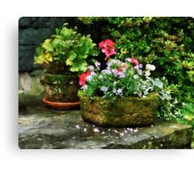 Geraniums and Lavender Flowers on Stone Steps Canvas Print