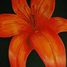 Orange Lily by Alison Howson