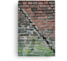 Close and different Canvas Print