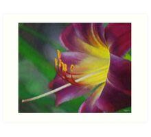 Flower As Art Art Print