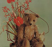 Ted Loves Flowers by laineymiller