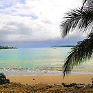 Idyllic Paradise In Bocas Del Toro, Panama by Al Bourassa