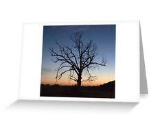 just a trace... Greeting Card