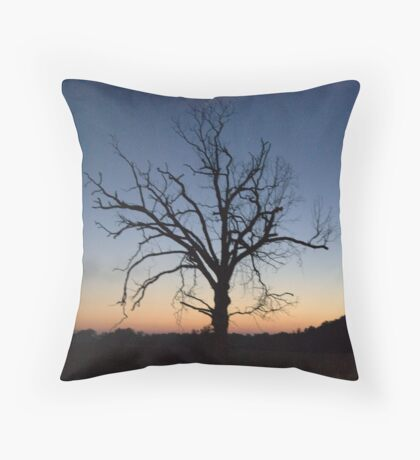 just a trace... Throw Pillow