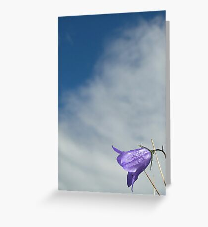 scots harebell Greeting Card