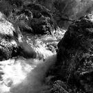 River near MT Buller by Aden Brown