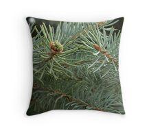 Evergreen Macro Throw Pillow