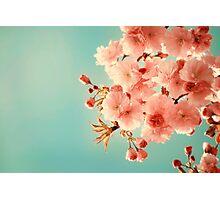 Cherry Cream Photographic Print