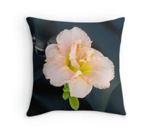 Apricot Daylily Throw Pillow