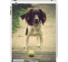 English Springer Spaniel iPad Case/Skin