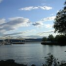 View of the Tappan Zee Bridge by artgoddess