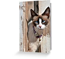 The Cat – A Purrrfect Carnivore Greeting Card