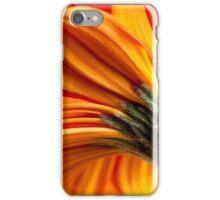 Gerbera 11 iPhone Case/Skin