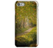 Path in the light iPhone Case/Skin