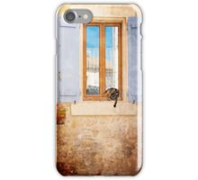Cat by the window iPhone Case/Skin