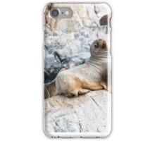 Sea lions iPhone Case/Skin