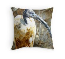 Long nose  Throw Pillow