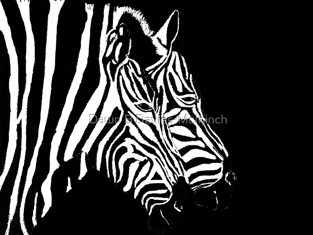 Merging Zebras by Dawn B Davies-McIninch