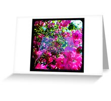 Pink Divine Greeting Card
