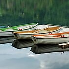 Reflections in the Hardangerfjord by Arie Koene
