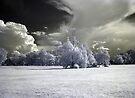 Approaching Storm by yolanda