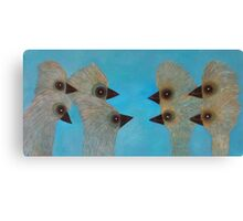 Emu Gathering 11 Canvas Print