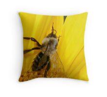 Sun-Bee Throw Pillow
