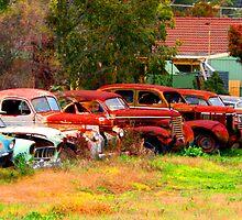 Car Yard by Alyssa Passlow