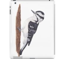 Downy Woodpecker bird iPad Case/Skin