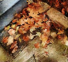 After Autumn Rain by RC deWinter