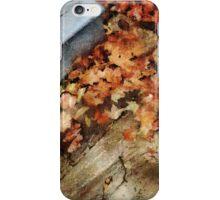After Autumn Rain iPhone Case/Skin