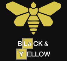 Methylamine Black & Yellow by Surpryse