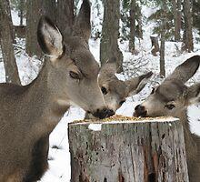 Mama & Twins Get a Snack by kotybear